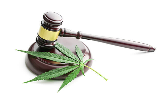Image of a cannabis leaf and judge's cavel